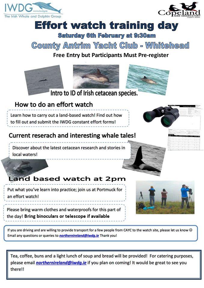 IWDG Northern Ireland Branch Hosting Effort Watch Training